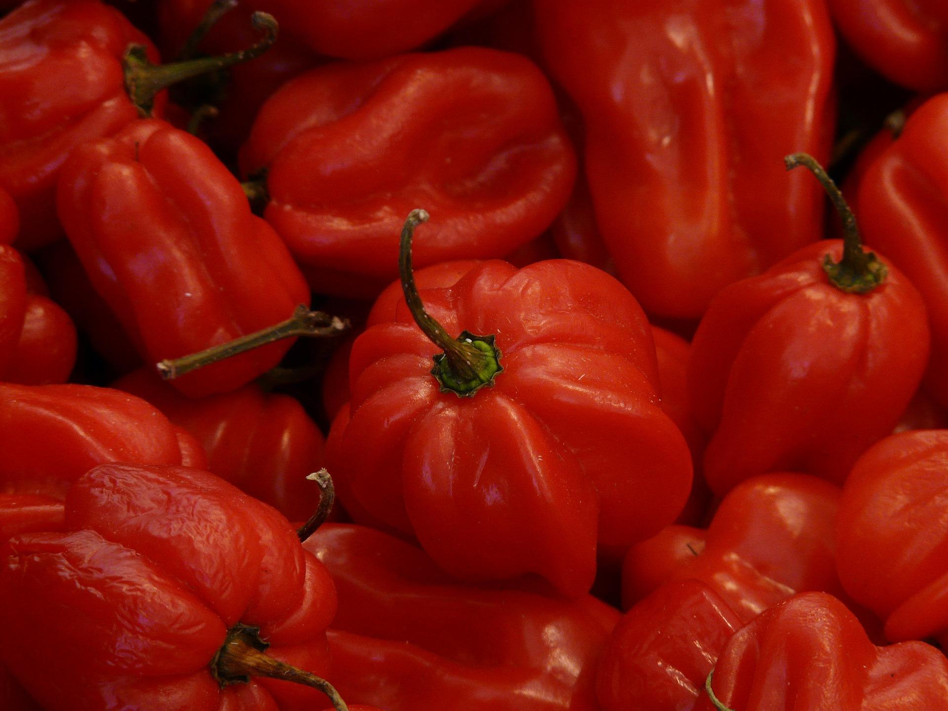 scala scoville e piccantezza peperoncini